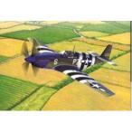 """1/48スケールプラモデル USAAF P-51B """"ノルマンディー上陸作戦70周年セット""""(限定品)"""