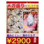 広島県産 加熱用【大粒】約1kg 特選