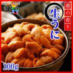 【生うに『100g』】Aグレード/高品質/すっきりした味わい/丼に最適/うに丼大盛