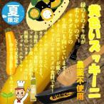 黄色いズッキーニ(イエローズッキーニ) 栽培期間中農薬不使用 1本