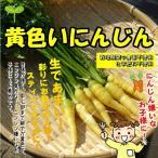 黄色いにんじん 栽培期間中農薬不使用・化学肥料不使用 約120g(長いサイズのが1本になる場合...