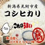【新潟県見附市産】 平成28年産コシヒカリ 5kg ☆低農薬栽培で育てられました!