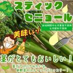 スティックセニョール 栽培期間中化学農薬不使用・化学肥料不使用 約100g♪