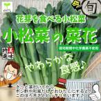 小松菜の菜花 栽培期間中化学農薬不使用 1束♪