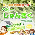 ベビーやわらか〜サラダ春菊 栽培期間中農薬不使用 1袋♪