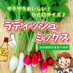 ラディッシュミックス 栽培期間中農薬不使用 1袋