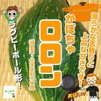 【暑い時期の常温便配送OK!】かぼちゃロロン 減農薬・化学肥料不使用 1個