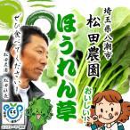 松田農園 ほうれん草 減化学農薬・減化学肥料 約200g♪