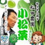 松田農園 小松菜 減化学農薬・減化学肥料 約300g♪