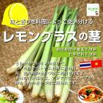レモングラスの茎 栽培期間中農薬不使用 約100g