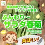 ふんわり〜サラダ春菊 栽培期間中農薬不使用・化学肥料不使用 埼玉県産 1束 ※1枚ずつ切ってある場合があります