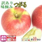 訳あり  葉とらず味極みりんご 10キロ