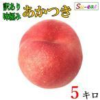 あかつき 桃 訳あり 減農薬 長野県産  5キロ レビューを書いたらオマケと200円クーポン