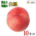 白鳳 桃 訳あり 減農薬 長野県産 10キロレビューを書いたらオマケと200円クーポン