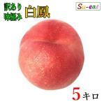白鳳 桃 訳あり 減農薬 長野県産  5キロ レビューを書いたらオマケと200円クーポン