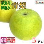 訳あり  二十世紀 梨  減農薬  長野県産 5キロ