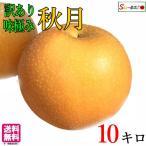 秋月 梨 訳あり 減農薬  長野県産 10キロ+1キロ増量 レビューを書いたら200円クーポン