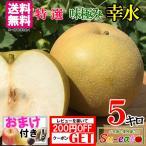 特選  朝どれ 梨 幸水 減農薬  長野県産 5キロ レビューを書いたら200円クーポン