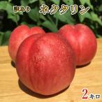 訳あり ネクタリン 減農薬 長野県産  2キロ レビューを書いたらオマケと200円クーポン