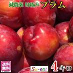 朝どれ プラム すもも  減農薬 長野県産  4キロ オマケつき レビューを書いたら200円クーポン