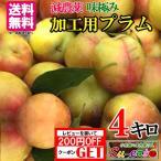 加工用 プラム 減農薬 長野県産  4キロ レビューを書いたらオマケと200円クーポン
