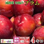 朝どれ プラム すもも  減農薬 長野県産  4キロ レビューを書いたらオマケと200円クーポン