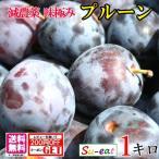 朝どれ 生プルーン  減農薬 長野県産  1キロ レビューを書いたら200円クーポン