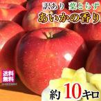 あいかの香り 訳あり りんご 減農薬 長野県産 送料無料 10キロ レビューを書いたら200円クーポン