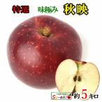 特選 プレミアム  秋映 りんご 減農薬 長野県産 5キロ レビューを書いたら200円クーポン
