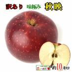 訳あり 葉とらず 味極み りんご 秋映 減農薬 長野県産 10キロ