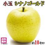 小玉 シナノゴールド りんご  減農薬 長野県産 10キロ レビューを書いたら200円クーポン