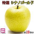 特選 葉とらず 味極み りんご シナノゴールド 減農薬 長野県産  10キロ
