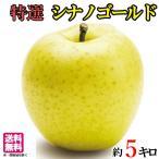 特選 葉とらず 味極み りんご シナノゴールド 減農薬 長野県産  5キロ
