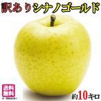 送料無料 訳あり 葉とらず 味極み りんご シナノゴールド 減農薬 長野県産  10キロ