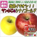 長野産 訳あり 葉とらず サンふじ&シナノゴールドセット りんご 減農薬 5キロ