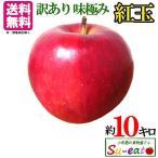 【送料無料】訳あり 葉とらず 味極み りんご 紅玉 減農薬 長野県産 10キロ