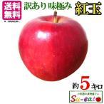 【送料無料】訳あり 葉とらず 味極み りんご 紅玉 減農薬 長野県産 5キロ
