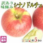 送料無料 長野産 味極み 超訳あり 小玉 りんご サンふじ やわらかめ 減農薬  5キロ
