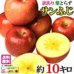 訳あり 葉とらず 味極み りんご シナノスイート 減農薬 長野県産10キロ
