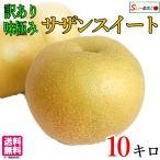 サザンスイート 梨 訳あり  減農薬 長野県産 10キロ レビューを書いたら200円クーポン