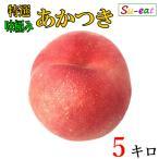 特選 あかつき 桃 減農薬 長野県産  5キロ レビューを書いたらオマケと200円クーポン