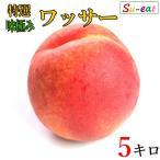 特選 プレミアム ワッサー 減農薬 長野県産 5キロ レビューを書いたらオマケと200円クーポン