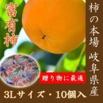 岐阜の富有柿3L×10個