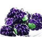 チャーム フルーツ ブドウ 10個 15mmx12mm ぶどう 果物 アクセサリー ピアス パーツ (AP0235)