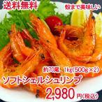 1kg 約70尾 ソフトシェルシュリンプ 殻まで美味しい  500g×2  ( えび エビ 海老 )  新食感