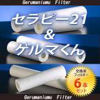 セラピー21・ゲルマくん【交換用フィルター 6本セット】≪ゲルマニウム温浴・温浴器≫【送料無料】