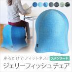 ジェリーフィッシュチェアー jellyfish chair バランスボール 椅子 イス デザイナーズ インテリア ダイエット ダイエット器具 エクササイズ フィットネス sps06