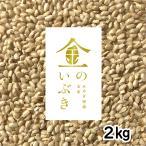 胚芽が3倍大きい玄米食専用米 宮城産金のいぶき 2kg 令和元年産