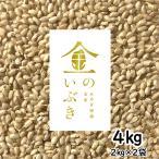 胚芽が3倍大きい玄米食専用米 宮城産金のいぶき 4kg(2kg×2) 令和元年産