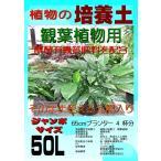 観葉植物の培養土(有機質肥料入り) ジャンボサイズ40L